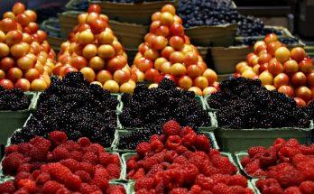 Pourquoi le marché de Vitry a-t-il du succès auprès du public ?